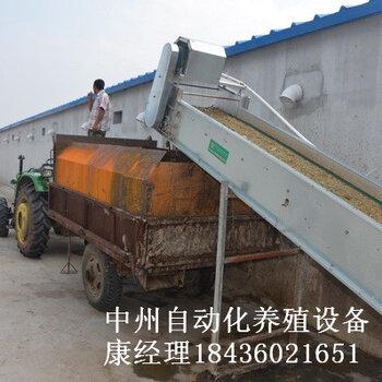 階梯式刮板清糞機簡易節省成本廠家