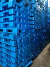 北辰区回收二手托盘,木托盘及塑料托盘回收