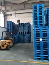 静海县回收闲置托盘,木托盘回收,塑料托盘回收及二手价格