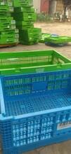 東麗區回收各種周轉箱,塑料筐回收價格高圖片