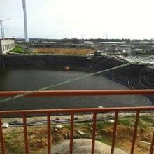 水產養殖防滲膜hdpe土工膜泥鰍魚塘養殖防滲土工膜耐腐蝕