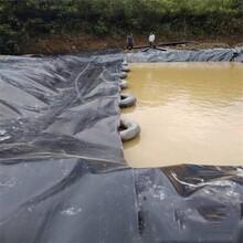 垃圾場HDPE土工膜,HDPE土工膜圖片