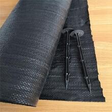 大棚防草除草布,編織布
