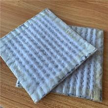 正宇納基膨潤土防水毯,垃圾填埋場防水毯4500g圖片