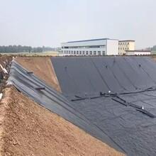 蓄水池防滲hdpe土工膜圖片