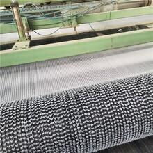 山東膨潤土防水毯廠家,防水毯廠家圖片