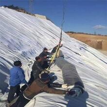 山东膨润土防水毯一平价格,防水毯厂家图片