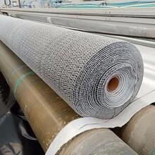 正宇膨潤土防水毯,膨潤土防滲毯圖片