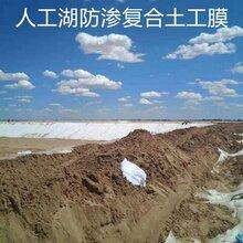 人工湖防滲復合土工膜圖片