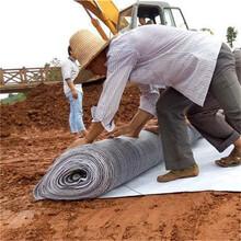 正宇膨润土防水毯,膨润土防水毯防渗防漏水图片