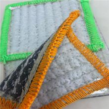 山东膨润土防水毯价格图片