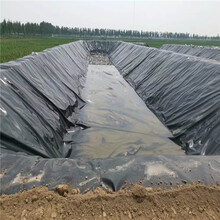耐腐蚀土工膜用途,HDPE土工膜图片
