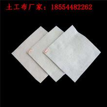 正宇短絲土工布,過濾保濕土工布防裂布