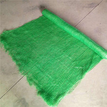 聚乙烯防尘网盖土网量大优惠图片