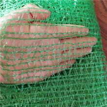 绿色防尘盖土网厂家图片