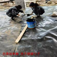 土工膜膠魚塘防滲土工膜用膠圖片