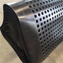車庫頂板排水板支持定做,hdpe排水板