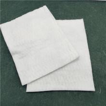 鋪路施工保濕養護毯150g200g300g土工布