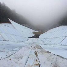 復合膜土工膜人工湖用復合土工膜景觀湖復合土工膜廠家