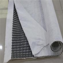 排水網質量保證,三維土工復合排水網