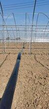 蔬菜喷灌N45--N100微喷带各类阀门连接件配件