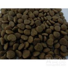 狗糧代工貓糧代工狗糧OEM代加工貓糧OEM代加工圖片