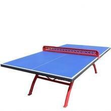 山西乒乓球台品种多样图片