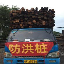 资讯:潍坊打桩木价格图片