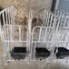 泊林畜牧廠家供應養殖場豬用限位欄復合定位欄