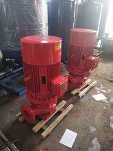 上海叠泉XBD3.2/0.83G-L单吸消防泵图片