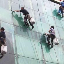 新北区大厦外墙清洗服务图片