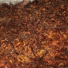 普陀區廢棄銅料回收站圖片