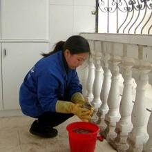 河东区办公室保洁服务公司图片