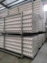 耐用瑞光牌pvc-u排水管材優質服務,pvc建筑材料落水管圖片