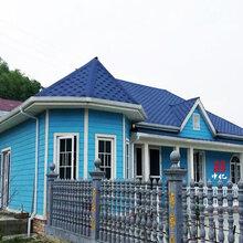 新余輕鋼龍骨別墅圖片