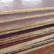 青浦竹胶桥梁板价格图片