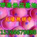 烟台纸荚膜红富士苹果信息网