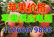 烟台纸荚膜红富士苹果今年销售行情