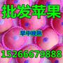 山东红富士苹果价格红富士苹果产地批发价格图片