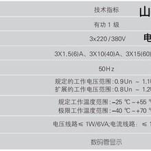 山东鲁正电表有限公司厂家热线图片