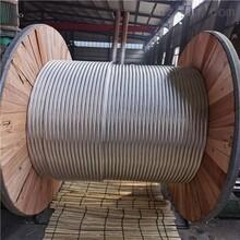 廣西鋼芯鋁絞線JL/G1A-120/20生產廠家圖片