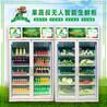 无人蔬菜售货柜-无人果蔬售货柜厂家-方便快捷自助便民-厂家代理