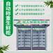 貴港生鮮柜配置,無人生鮮果蔬售貨柜
