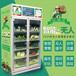 北京生鮮柜-小區果蔬生鮮售賣,無人生鮮果蔬售貨柜
