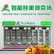 鶴壁生鮮柜-無人售貨機銷售蔬菜,無人果蔬保鮮售貨機