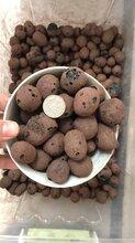 常州陶粒厂家发货,专注优质陶粒,真正的陶粒专家图片