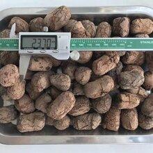 无锡陶粒厂家专注生产/销售各规格发货快捷图片