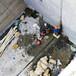 萍鄉市地下室斷裂縫滲漏處理方法