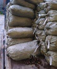 罗湖区砂石水泥价格图片