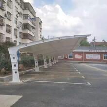 温优游注册平台膜结构停车棚供货商图片